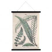 Grafika, dekoracja ścienna BOTANIKA, rozmiar L