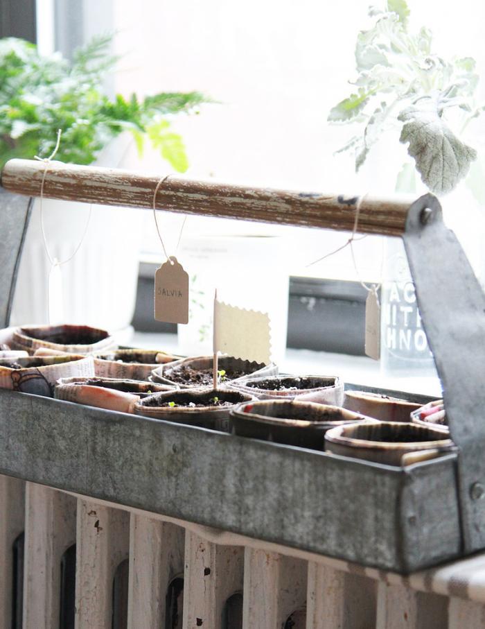 Zioła w donicach - własny wkład w ogród i balkon w stylu skandynawskim